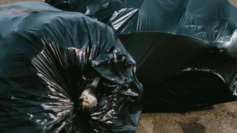 Trash pickup will be rescheduled in Jackson, Mo. for Thanksgiving (Source: Pexels)