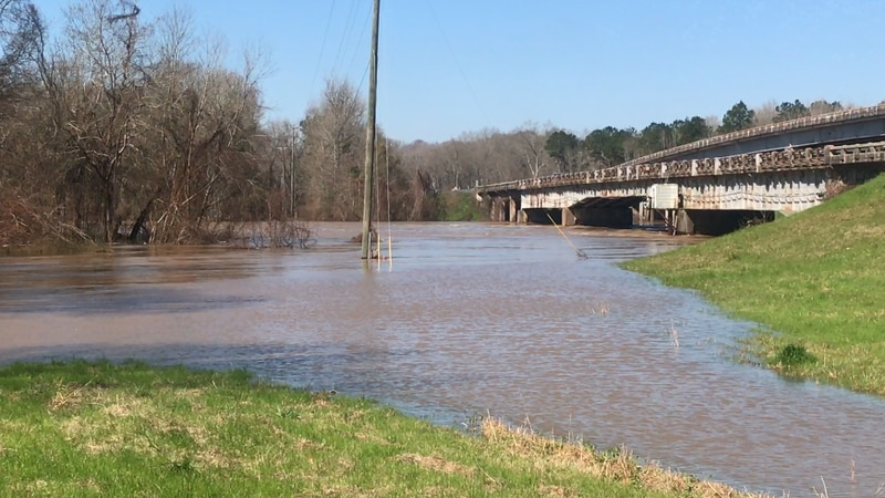 Columbia's animal rescue and shelter, is helping those that have animals during the flood.