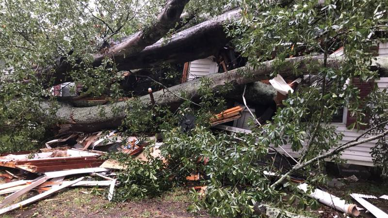 Storm damage in Natchez