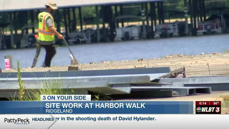 Old Dock environmental clean-up could lead to new Reservoir development