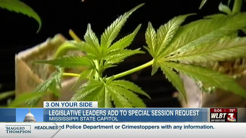 Legislative leaders request that more than medical marijuana be included in a special session...