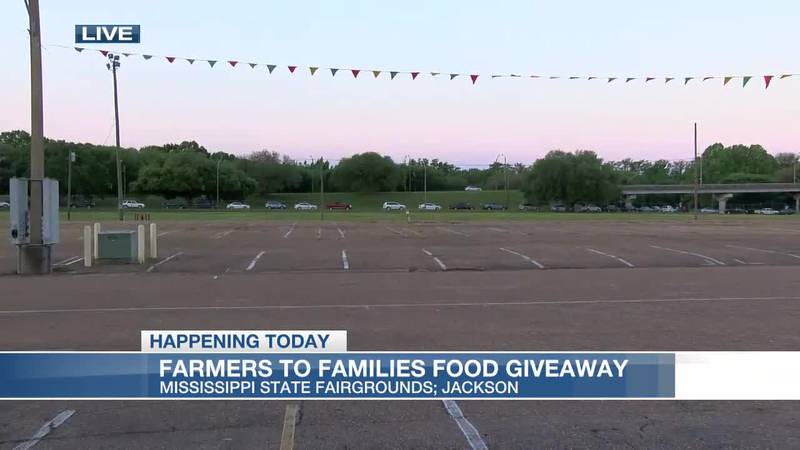 Cars line up seven hours early for giveaway, 2,600 boxes of food distributed Wed.