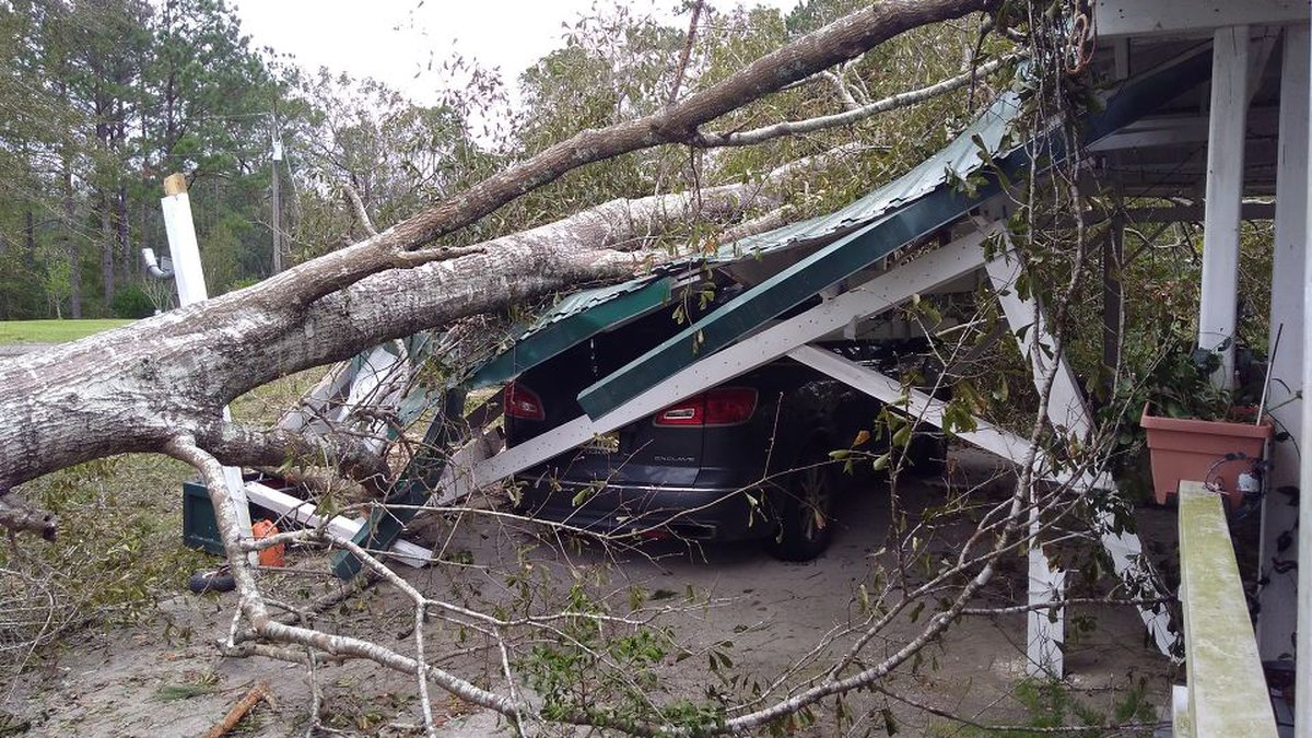 A tree that fell down Hurricane Zeta landed on the carport of a home in McHenry, crushing the...
