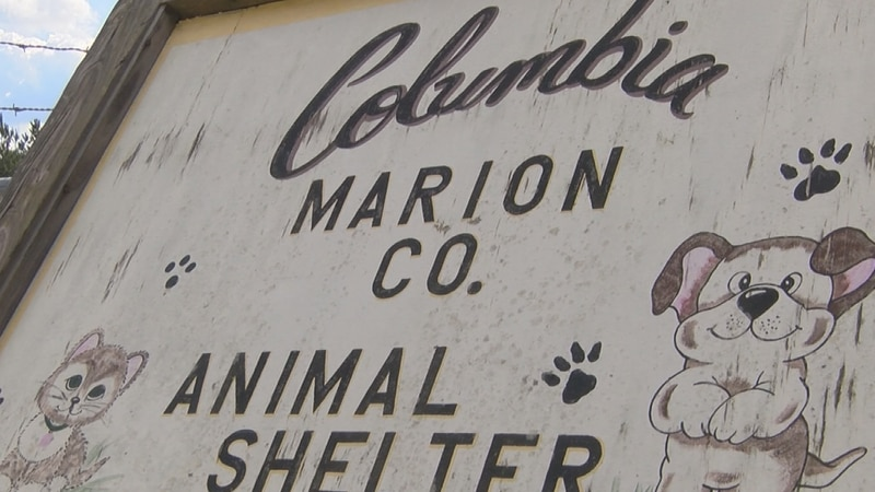 Columbia city officials say some positive changes have been made at the Columbia-Marion County...