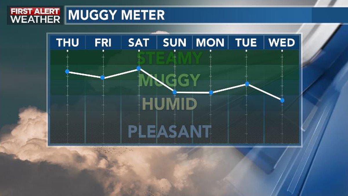 Mid-Summer Humidity Drop