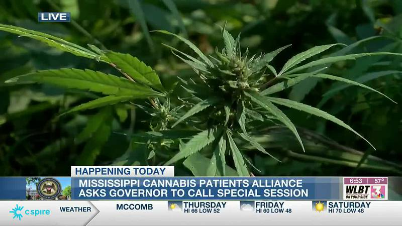 Cannabis Patients Alliance asks governor to call special session