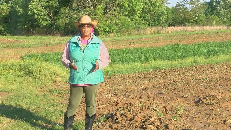 Cindy Ayers Elliott, CEO Footprint Farms
