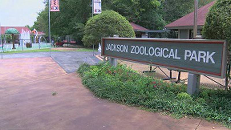 City Council members vote to proceed with legal action against the zoo after an executive...