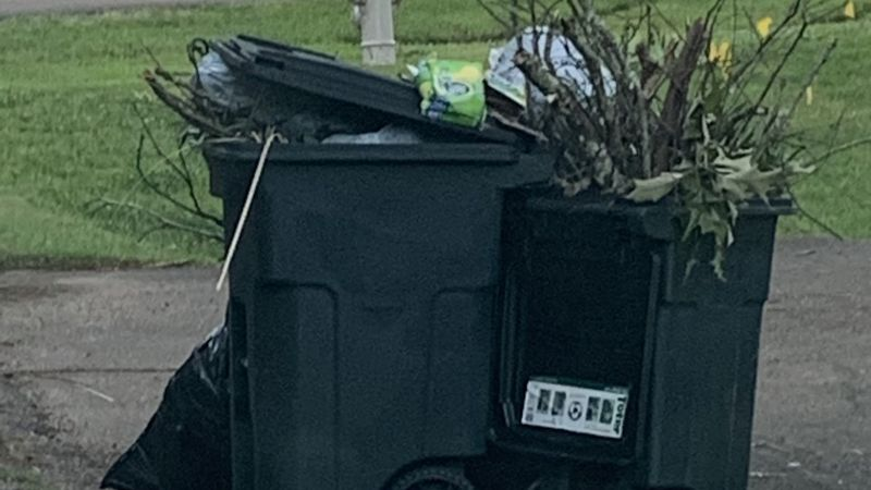 Brandon Mayor Butch Lee is asking residents to refrain from putting yard waste out for garbage...