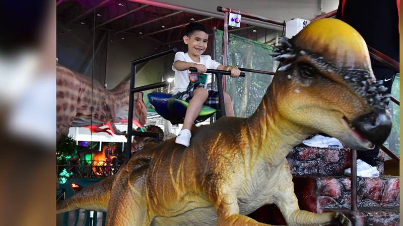 he Jackson Convention Complex will host a dinosaur-themed education and entertainment event...