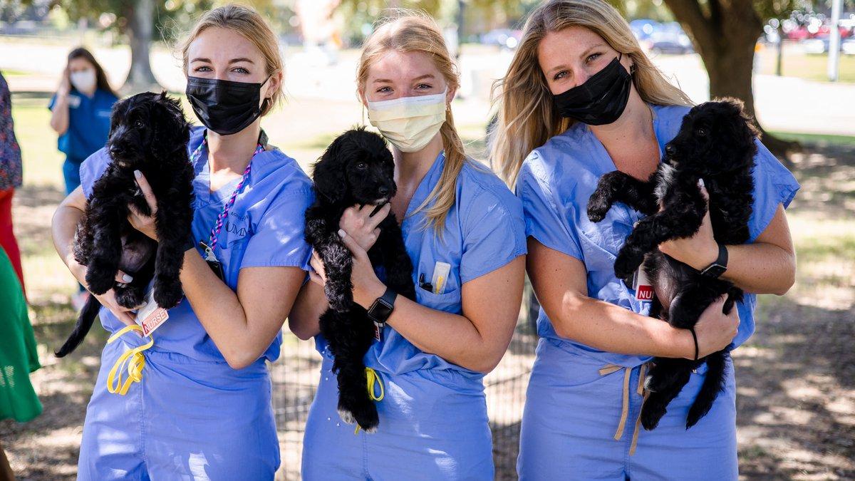 From left, 2 South nurse graduates Laura Saulters, Jade Jackson and Woodsen Lott hold a trio of...