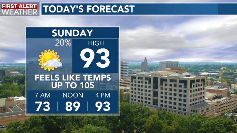 Typical, summertime forecast for your Sunday!