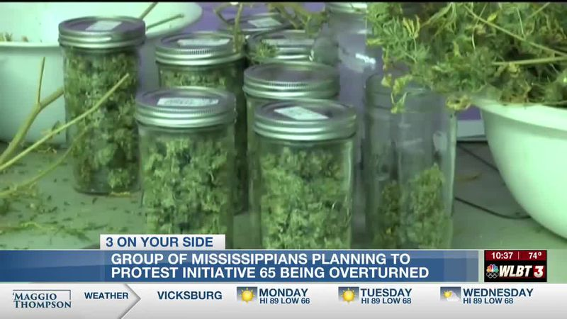 Hundreds of Mississippians plan to protest Initiative 65 reversal